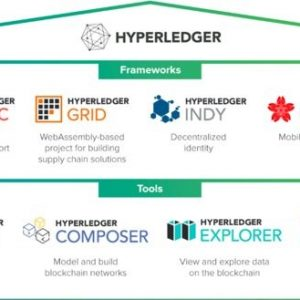 Hyperledger Projects Module for corporates